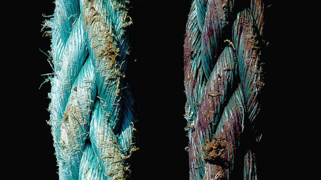 photographic detail of two parallel ropes